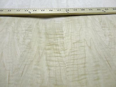 Curly Figured Maple Wood Veneer 24 X 48 With Paper Backer 140th Thick Aa