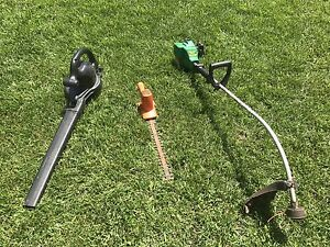 Electric Trimmer and blower + gas trimmer for borders