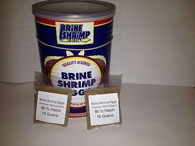 Shrimp Food - 20 Grams Brine Shrimp Eggs 90% Hatch Rate (Premium Artemia Cysts) FREE SHIPPING