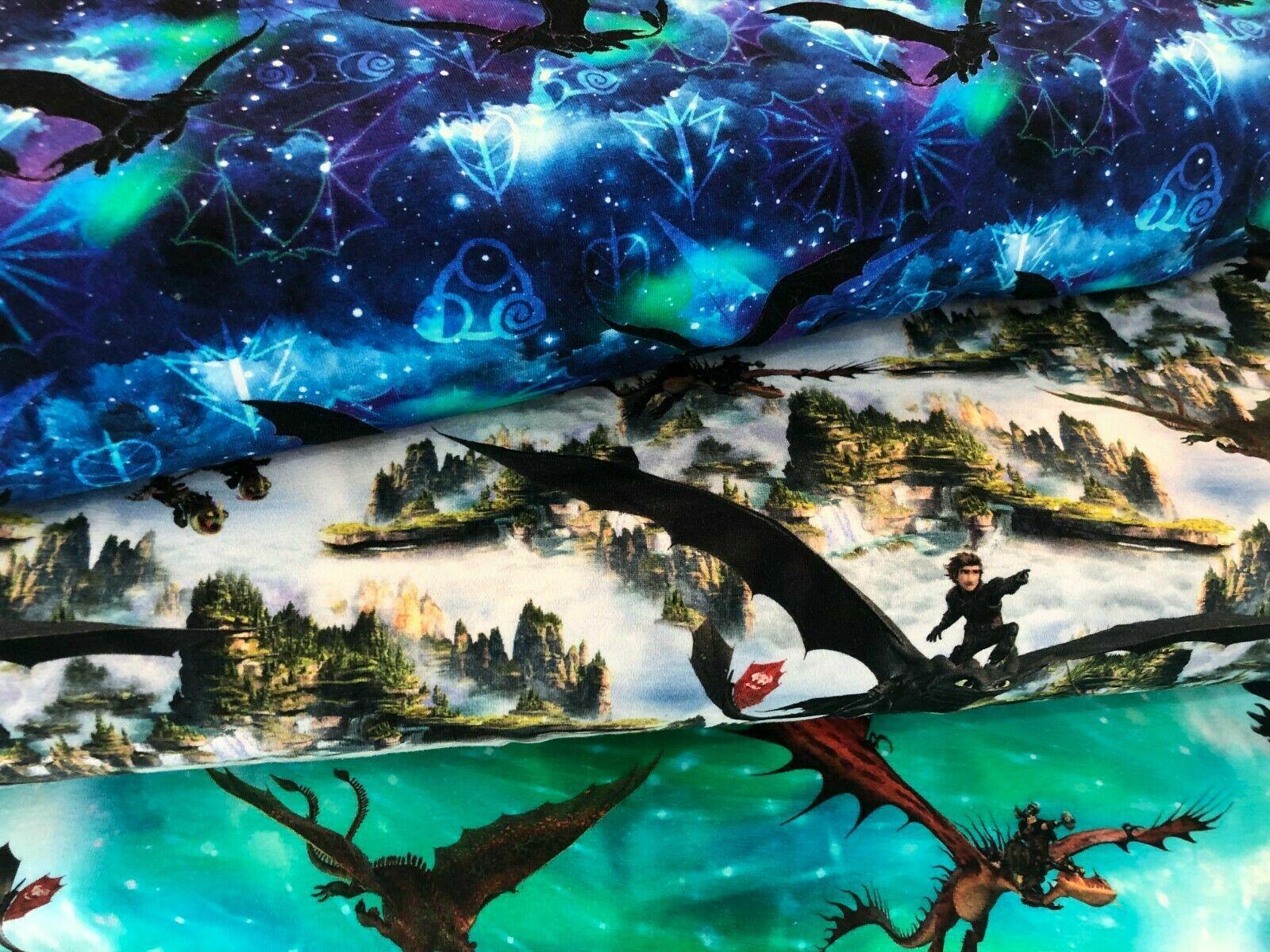 Jersey Digital Kinderstoff Dragon Drachenzähmen leicht gemacht 4,5025cm
