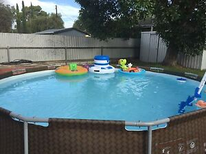 Pool with ladder! Kurralta Park West Torrens Area Preview