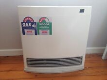 ***AS NEW*** RINNAI DYNAMO 15 NATURAL GAS HEATER Bexley Rockdale Area Preview