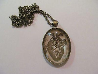 Goth Anatomical Heart Oval Bronze Pendant On A 24  Bronze Chain   Handmade