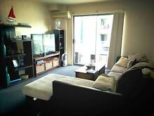 Shareflat Darling Harbour, CBD Wallsend Newcastle Area Preview