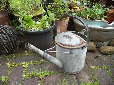 Vintage Galvanised Watering Can Galvanized 1 Gallon with Brass Badge