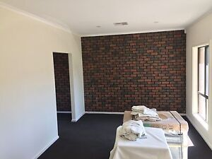 Professional painter looking for job Prospect Prospect Area Preview