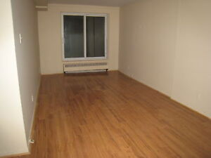 NDG Connaught/Patricia 3 1/2 heathed non smoker 575$  1 bedroom