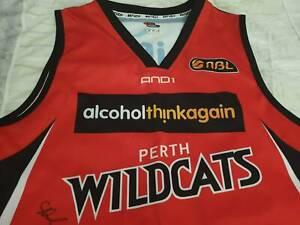 Perth wildcats top