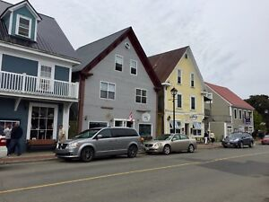 Beautiful Ocean view apartments in the heart of Saint Andrews