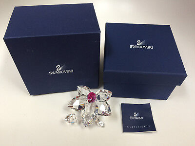 Swarovski Crystal Orchid Blossom 864464  with Box and COA