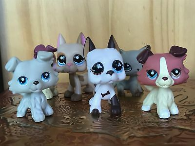 6 lot Rare Littlest Pet shop LPS Toy Great Dane Dogs Collie Cat Collection Gift