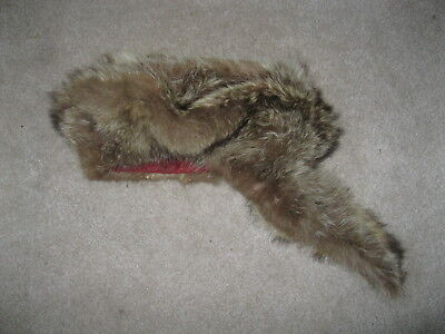 Vintage homemade raccoon hat for sale  Andover