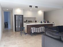 Great sunny room in luxury apartment Redfern Inner Sydney Preview