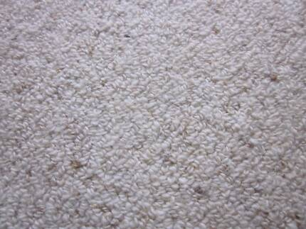 Carpet Wool Berber