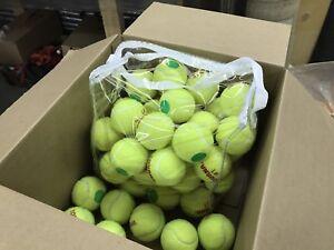 50 balles de tennis entraînement