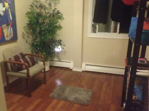 Room for rent in cozy 2 bedroom apartment near NSCC Akerley