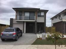 7 Lowthers Street Yarrabilba BRAND NEW HOUSE - Ready for rent Browns Plains Logan Area Preview