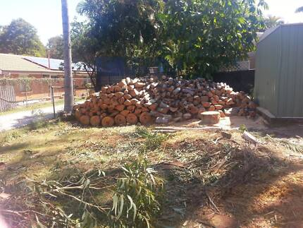 Firewood. $50 trailer. Kallangur. Kallangur Pine Rivers Area Preview