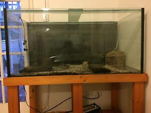 Aquarium tank and stand. Springwood Logan Area Preview