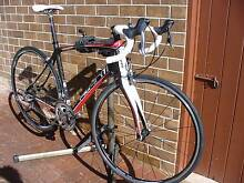 Avanti Cadent full CARBON road bike Bellevue Heights Mitcham Area Preview