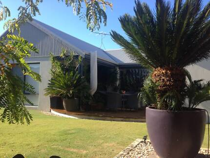 Special Roomie Wanted... Dunsborough Busselton Area Preview