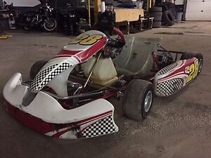 For sale or Trade Race Cart Cambridge Kitchener Area image 7