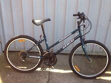 ADULT BICYCLE (GEMINI OVERSIZE) Liverpool Liverpool Area Preview
