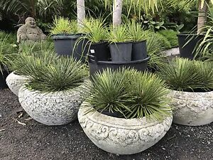 Stone pot Water Bowl Water feature 60cm Classy style Berry Shoalhaven Area Preview