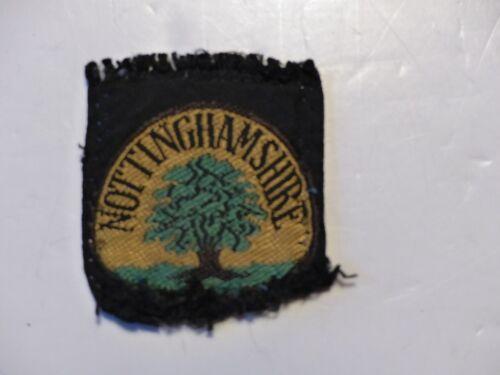 Used Vintage Nottinghamshire Boy Scout District Badge United Kingdom Tree Design