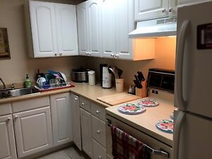 One bedroom all inclusive basement apartment