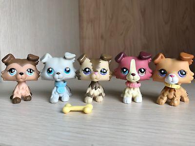 5×Littlest Pet Shop LPS Toys Figure Collie Dogs #2452 #2210 #1262 #363 #893