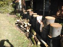 Firewood - Free Bayswater Bayswater Area Preview