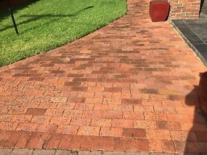 Red clay brick pavers Millswood Unley Area Preview