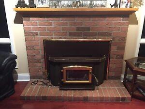 Fireplace wood stove insert