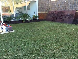 Rejuvenate your Lawn or Verge O'Connor Fremantle Area Preview