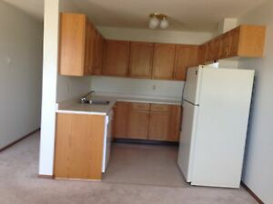 Quiet Building! Wetaskiwin Two Bedroom Apartment