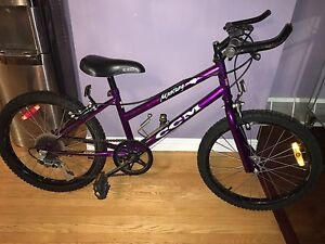 Girls CCM Bike $100
