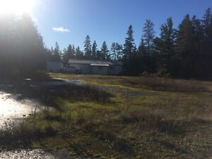 Hunting camp on manitoulin island 100 acres