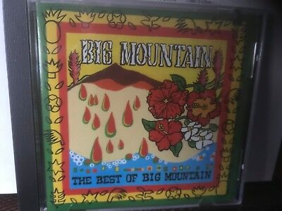 REGGAE BAND CD - BIG MOUNTAIN - THE BEST OF BIG MOUNTAIN - $7.50 - MINT