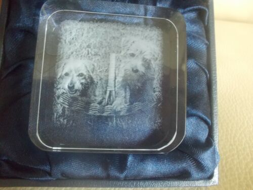 Norfolk Terrier Pupppies In Basket Square Glass Paperweight, NIB, Laser Image!