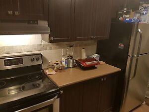 4 1/2  apartment for Rent  Gatineau Ottawa / Gatineau Area image 8