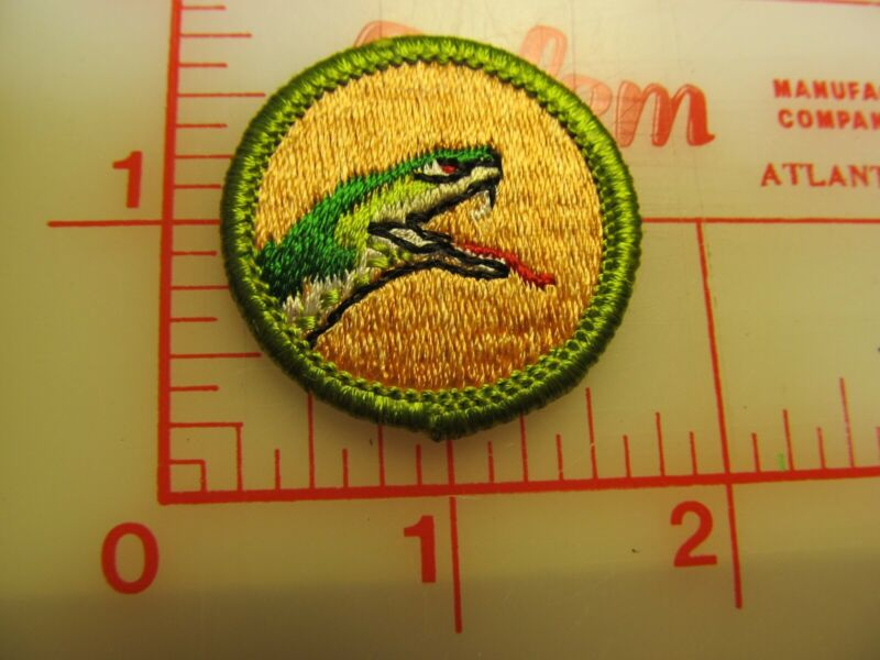 REPTILE STUDY merit badge plastic backed patch (oP)