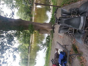 ready to ride atv!! need gone today $550 OBO