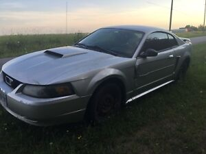 2003 V6 Ford Mustang Standard  w 2 New Doors As Is