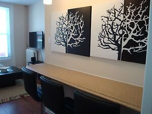South End 2 bedroom, fully furnished, all incl.