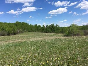 75 acre hobby farm land for rent