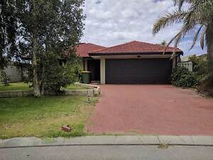 Port Kennedy 5 X 2 for rent Port Kennedy Rockingham Area Preview
