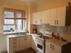 room for rent Bondi Beach Eastern Suburbs Preview