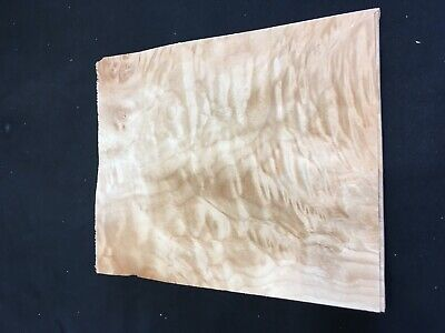 Quilted Burl Maple Raw Wood Veneer Sheets 8 X 10 Inches 142nd Lot 135