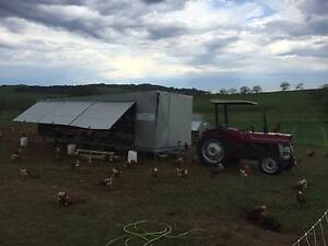 Chicken caravan with full Pastured Free Range Egg set up Albion Park Shellharbour Area Preview
